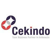 Cekindo Group Logo