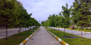 Adana_Merkez_Park_03