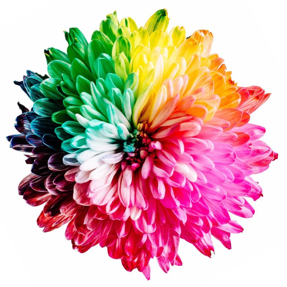Dodavatel barev a spotřebního materiálu pro polygrafii hledá obchodní partnery
