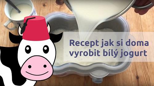 Recept na výrobu domácího bílého jogurtu v jogurtovači